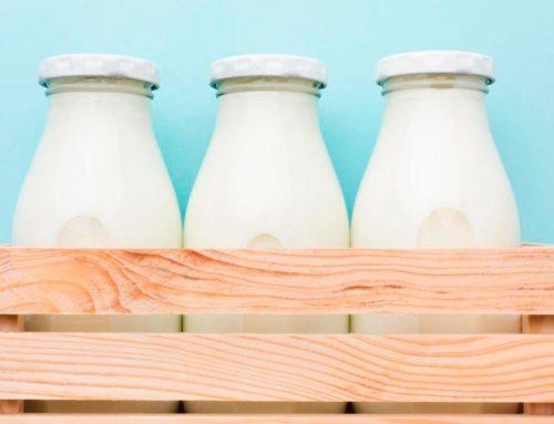 Proteínas lácteas e nutrição: o que é importante saber?